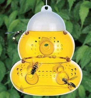 Grosse Insektenfalle Wespenfalle Fliegenfalle Mit 6 Eingängen von HAUSHALT & ZUBEHÖR